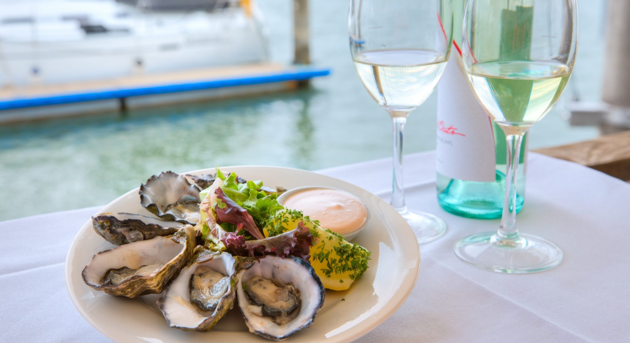 Moreton Bay Boat Club Scarborough Redcliffe Oysters Seafood