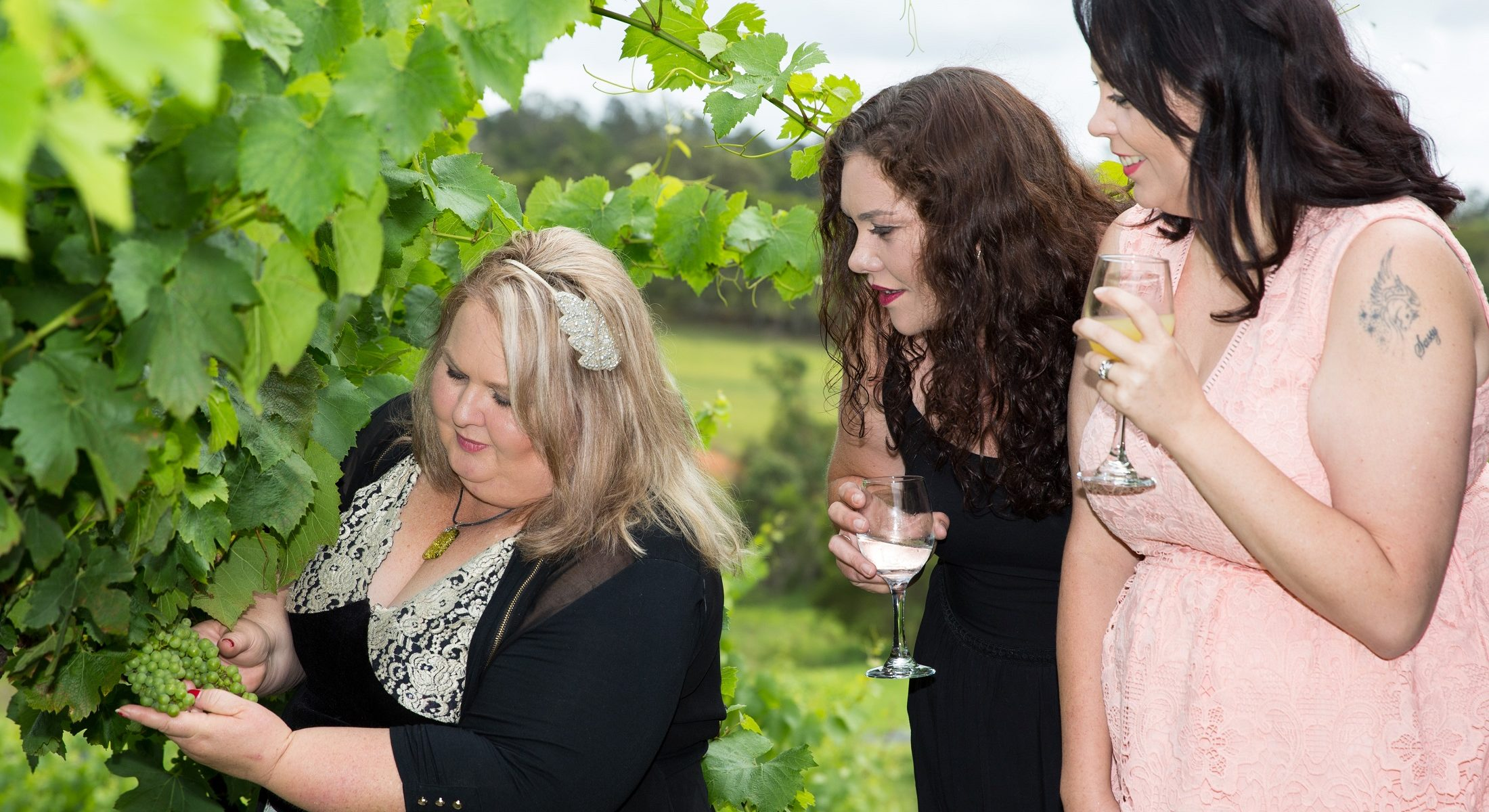 Mountain Wine Tours South East Queensland Winery Visit Moreton Bay Region